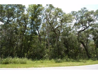 4702 Rambling River Road, Brandon, FL 33511 - MLS#: T2904593