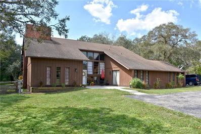 11421 Wild Cat Lane, New Port Richey, FL 34654 - MLS#: T2905606