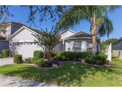 18226 Saltwater Run Place, Tampa, FL 33647 - MLS#: T2906091