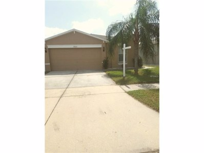 7864 Carriage Pointe Drive, Gibsonton, FL 33534 - MLS#: T2906323