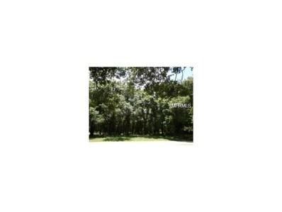 11023 Bonnet Hole Drive, Thonotosassa, FL 33592 - MLS#: T2906822
