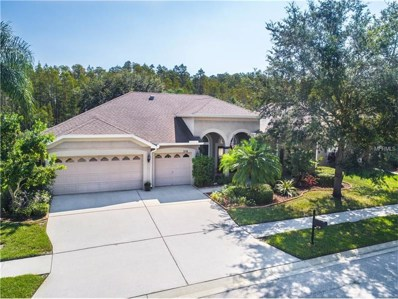 3718 Duke Firth Street, Land O Lakes, FL 34638 - MLS#: T2906878