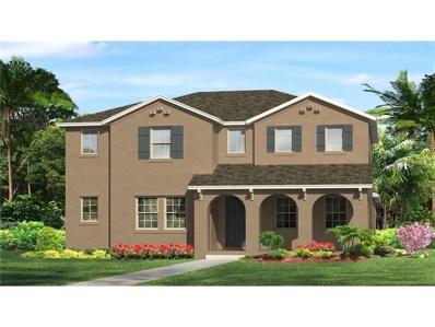 17233 Richness Way, Land O Lakes, FL 34638 - MLS#: T2907000
