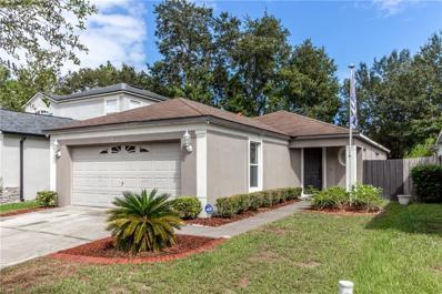 8532 Quarter Horse Drive, Riverview, FL 33578 - MLS#: T2907178