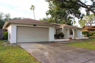 4117 Hollowtrail Drive, Tampa, FL 33624 - MLS#: T2907328