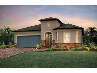7924 Olive Brook Drive, Wesley Chapel, FL 33545 - MLS#: T2908059