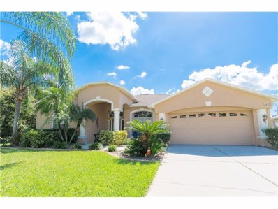25022 Bandana Court, Land O Lakes, FL 34639 - MLS#: T2908176