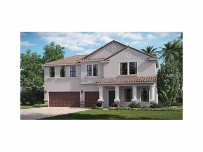 11954 Cinnamon Fern Drive, Riverview, FL 33579 - MLS#: T2908651