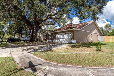 1012 Pleasant Pine Court, Valrico, FL 33596 - MLS#: T2908888