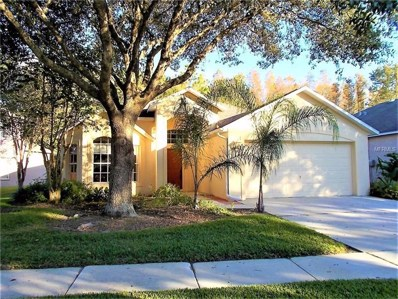 19117 Chemille Drive, Lutz, FL 33558 - MLS#: T2909018
