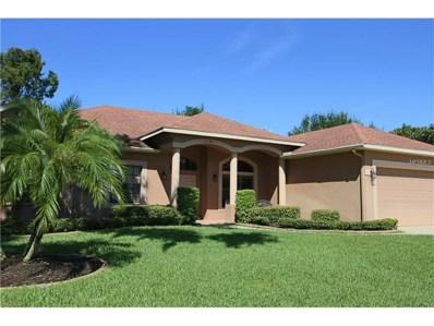 21141 Marsh Hawk Drive, Land O Lakes, FL 34638 - MLS#: T2909164