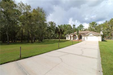 19467 Hidden Oaks Drive, Brooksville, FL 34604 - MLS#: T2909420