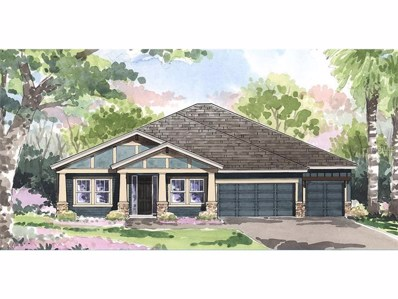 8155 Water Color Drive, Land O Lakes, FL 34638 - MLS#: T2910041