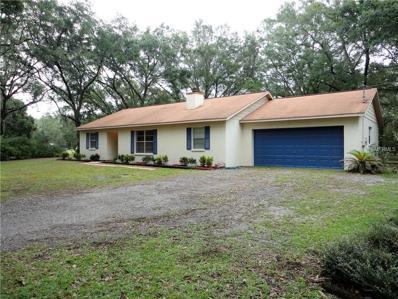 7116 Dormany Loop, Plant City, FL 33565 - MLS#: T2910136