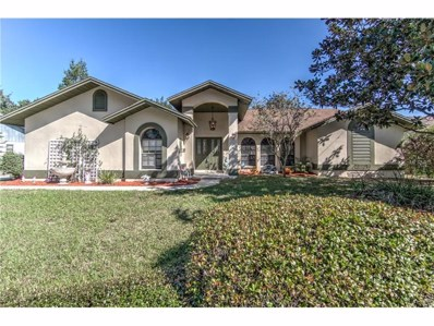 2316 Sunview Avenue, Valrico, FL 33596 - MLS#: T2911047
