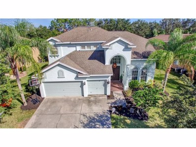 19105 Harbor Cove Court, Lutz, FL 33558 - MLS#: T2911114