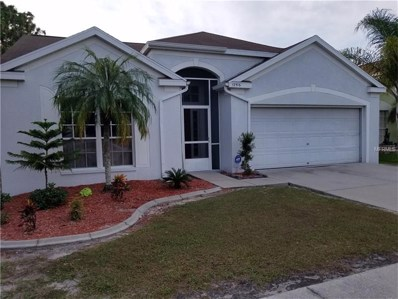 12516 Dawn Vista Drive, Riverview, FL 33578 - MLS#: T2912075