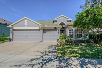 11142 Bridgecreek Drive, Riverview, FL 33569 - MLS#: T2912422