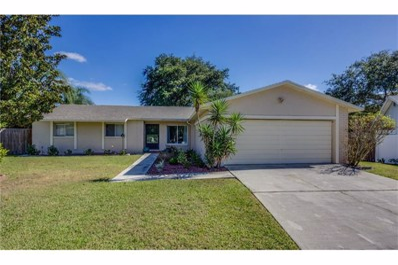 2307 Silver Hill Court, Valrico, FL 33594 - MLS#: T2912525