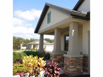 12012 Creek Preserve Drive, Riverview, FL 33579 - MLS#: T2912630