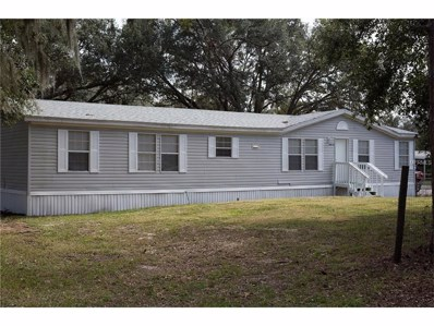 34710 Treasure Cove Road, Leesburg, FL 34788 - #: T2913739