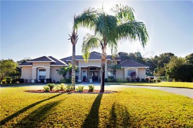 3417 Wiggins Trace Drive, Plant City, FL 33566 - MLS#: T2913780