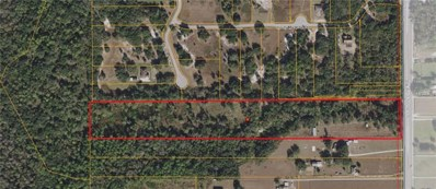 7117 S County Line Road, Plant City, FL 33567 - MLS#: T2913993
