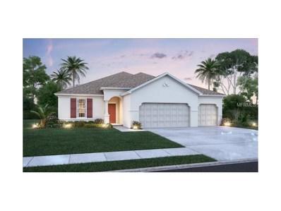 11624 Tetrafin Drive, Riverview, FL 33579 - MLS#: T2914043