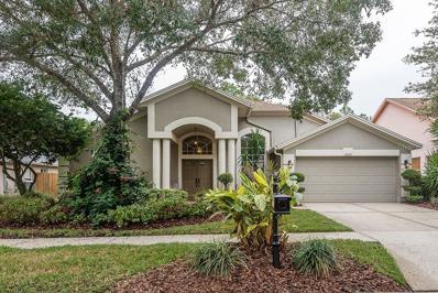 10616 Chambers Drive, Tampa, FL 33626 - MLS#: T2915348