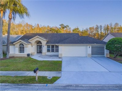 1428 Hoversham Drive, New Port Richey, FL 34655 - MLS#: T2915878