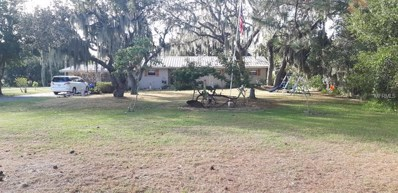 10909 County Road 672, Riverview, FL 33579 - MLS#: T2916251