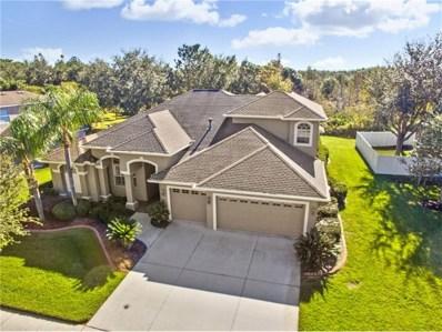 19121 Timber Reach Road, Tampa, FL 33647 - MLS#: T2916447