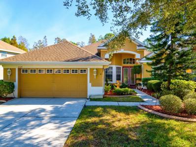 11329 Minaret Drive, Tampa, FL 33626 - MLS#: T2917212