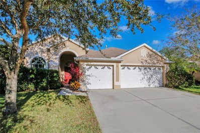 12007 Mountbatten Drive, Tampa, FL 33626 - MLS#: T2917449