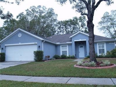 14801 Redcliff Drive, Tampa, FL 33625 - MLS#: T2917581