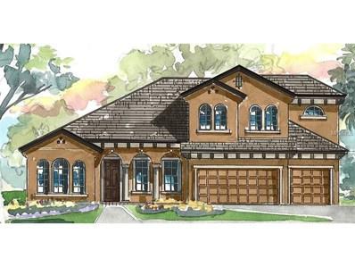 19523 Lonesome Pine Drive, Land O Lakes, FL 34638 - MLS#: T2917916