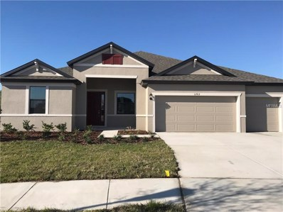 11913 Sunburst Marble Road, Riverview, FL 33579 - #: T2918018