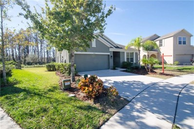 5329 Dittany Court, Land O Lakes, FL 34639 - MLS#: T2918403