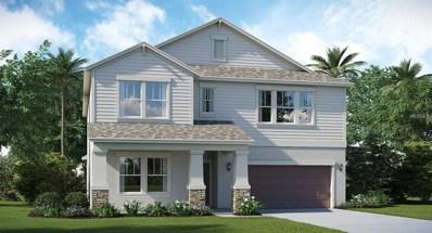 10911 Purple Martin Boulevard, Riverview, FL 33579 - MLS#: T2919036