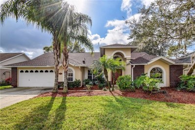5612 Piney Lane Drive, Tampa, FL 33625 - MLS#: T2919134