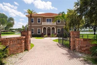 18133 Patterson Road, Odessa, FL 33556 - MLS#: T2919948