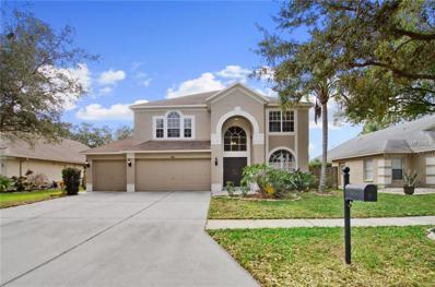 9110 Rockrose Drive, Tampa, FL 33647 - MLS#: T2920008