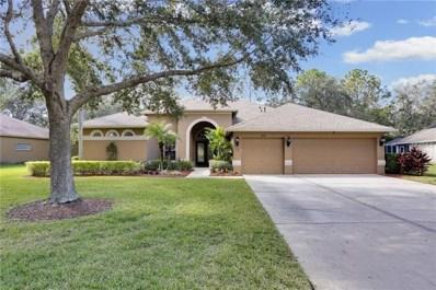 19132 Beckett Drive, Odessa, FL 33556 - MLS#: T2920281