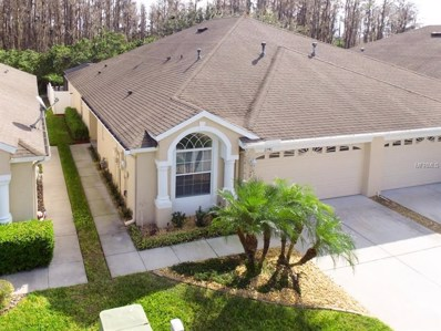2746 Tanglewylde Drive, Land O Lakes, FL 34638 - MLS#: T2921145