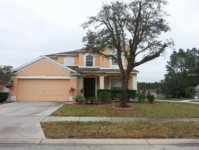 30419 Grymes Drive, Wesley Chapel, FL 33545 - MLS#: T2921152