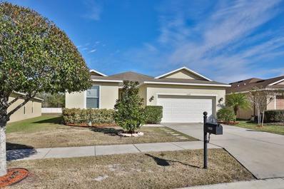 11020 Running Pine Drive, Riverview, FL 33569 - MLS#: T2921830