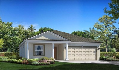 10547 Park Meadowbrooke Drive, Riverview, FL 33578 - MLS#: T2922011