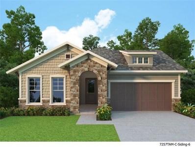13929 Swallow Hill Drive, Lithia, FL 33547 - MLS#: T2922769