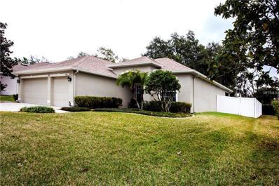 10812 Moss Island Drive, Riverview, FL 33569 - MLS#: T2923166