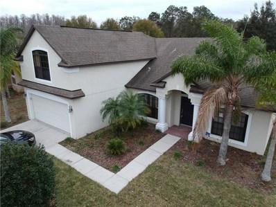 15228 Princewood Lane, Land O Lakes, FL 34638 - MLS#: T2923351